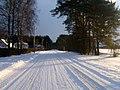 Sniegots cels - panoramio.jpg
