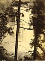 Snoqualmie Falls viewed through trees, Washington, ca 1889 (BOYD+BRAAS 52).jpg