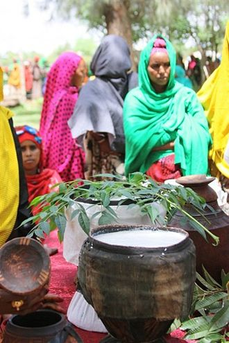 Somali Region - As part of the Camel Milk Value-Chain Development project ceremony, women from Fafan village in the Somali Regional State offer fresh camel milk and other local delicacies in traditional containers.