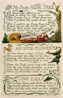 The Lilly poem written by the English poet William Blake