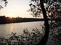 Sonnenuntergang Haddorfer Seen - panoramio.jpg