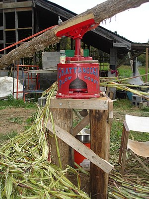 Sweet sorghum - Horse-driven, antique sorghum-cane juicer being operated at an organic farm in central North Carolina, for syrup production