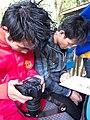 South East Asia 2011-213 (6032101217).jpg