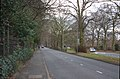 South along Hillfoot Road.jpg