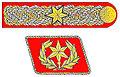 SpecialSAinsignia.jpg