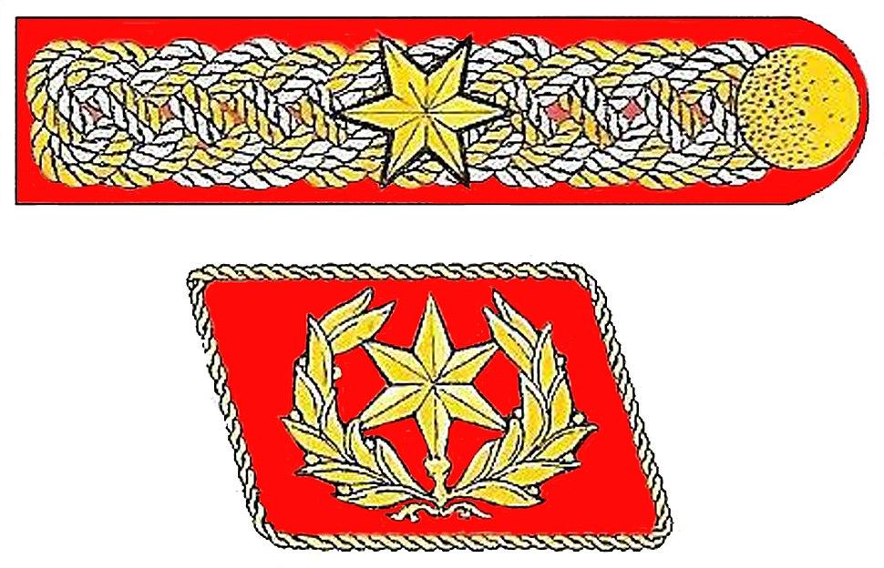 SpecialSAinsignia