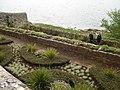 St Michael's Mount garden 1.jpg