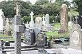 St Patricks RC, Saul (08), August 2009.JPG