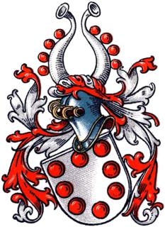 Staël von Holstein noble family