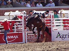 A cowboy in a black vest and hat struggles to hold onto his horse as it bucks in midair.