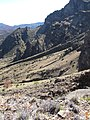 Starr-091207-0306-Pellaea ternifolia-habitat with Kim-West Rim wall Haleakala National Park-Maui (24873592202).jpg