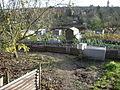 Stonebridge Pond Allotments - geograph.org.uk - 617139.jpg