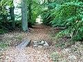 Stones or planks^ - geograph.org.uk - 585692.jpg