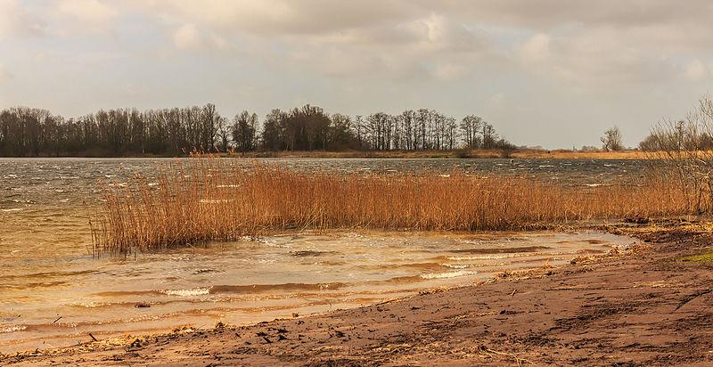 File:Stormachtige wind boven Put van Nederhorst (gemeente De Fryske Marren).jpg