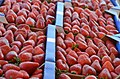 Strawberry Fields In Carlsbad Ca (120852605).jpeg