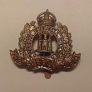 Suffolk Regiment Cap Badge.jpg