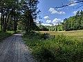 Sugar River Recreational Trail, Newport NH.jpg
