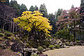 Suwa Yakata-ato Garden of Ichijodani Asakura Family Historic Ruins02s3s4592.jpg