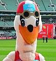 Swans mascot.jpg