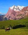 Swiss Countryside (15404388871).jpg