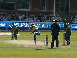 Pakistan Cricket Team 23