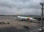 TAP Portugual aircraft at GRU airport 2018 01.jpg