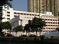 Tai Po Government Primary School.JPG