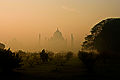 Tajmahal Rising out of the Mist.jpg
