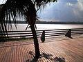 Tarde de Sol no Rio Madeira.jpg