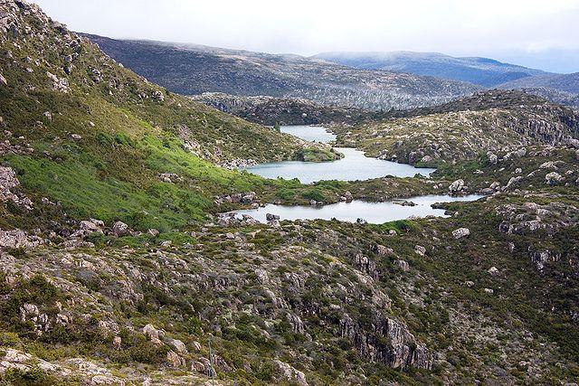 Parc national du mont Field