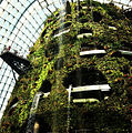 The Fall in the Cloud Forest, Gardens by the Bay, Singapore - 20120628-03.jpg