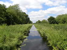 The Glastonbury Canal (geograph 2438616).jpg