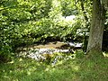 The River Dove near the Daffy Cafe in Farndale - geograph.org.uk - 207439.jpg