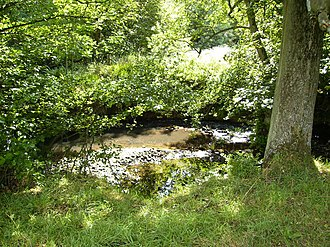 River Rye, Yorkshire - Farndale is a Site of Special Scientific Interest