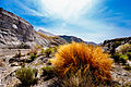 The Tabernas desert.jpg