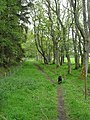 The edge of Buckton Moor - geograph.org.uk - 828266.jpg