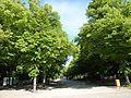 Tiergarten, Berlin, Germany - panoramio (83).jpg