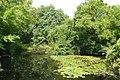 Tiergarten Teich - geo.hlipp.de - 40969.jpg