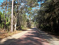 Tiger Bay State Forest North Entr Pershing Hwy01.jpg