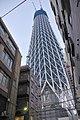 Tokyo Sky Tree under construction 20100131-1.jpg