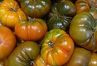 Tomata Raf 2015-12-29-1543.jpg