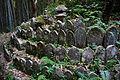 Tono Kizugawa Kyoto pref Japan29n.jpg