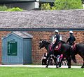 Toronto Police Mounted Unit - panoramio.jpg