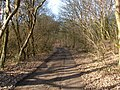 Track to Finney Green - geograph.org.uk - 129565.jpg