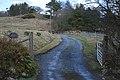 Track to Garreg Wen - geograph.org.uk - 1771900.jpg