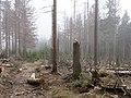 Trail near Sonnenkappe 17.jpg