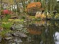Trees, Flowers and busches are giving their last show before winter - panoramio.jpg