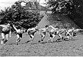 Trening sportowy żołnierzy 1. Samodzielnej Brygady Spadochronowej w Wielkiej Brytanii (21-101-2).jpg