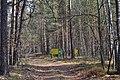 Troianivka Manevytskyi Volynska-Kruchene ozero nature reserve-view with boards.jpg