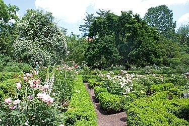 Tudor Place flower garden 2011 3.jpg